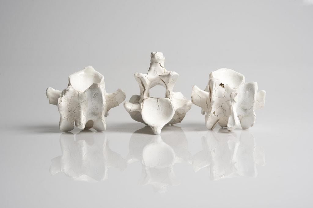 USQ Ceramics – Dan Elborne