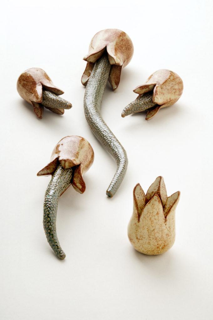 USQ Ceramics – Erin Hermann
